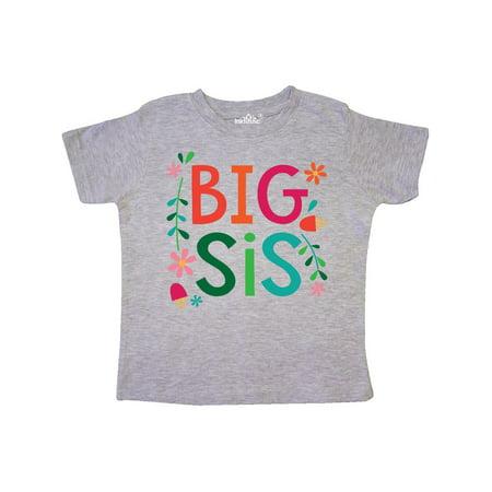 Big Sis Girls Cute Sister Announcement Gift Toddler T-Shirt Cure Girl Shirt