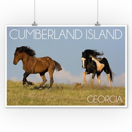 Cumberland Island, Georgia -Wild Horses Running in Field - Lantern Press Photography(James T. Jones) (9x12 Art Print, Wall Decor Travel (Wild Horses Of Sable Island Prints For Sale)