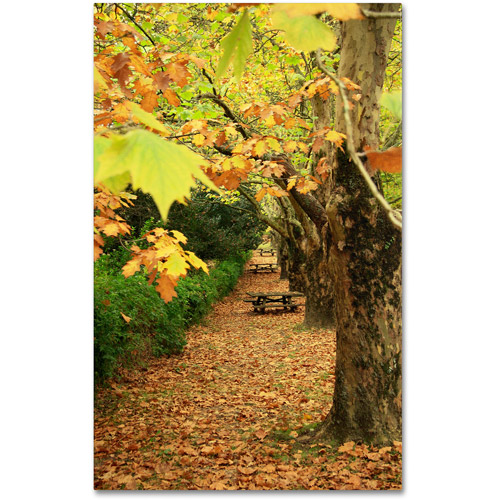 "Trademark Fine Art ""Autumn Conversations"" Canvas Art by Beata Czyzowska Young"