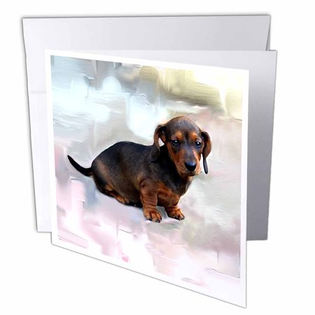 3drose miniature dachshund greeting cards 6 x 6 inches set of 6 3drose miniature dachshund greeting cards 6 x 6 inches set of 6 m4hsunfo
