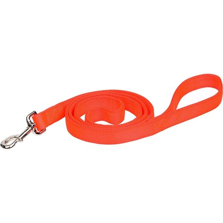 Products DCPR2906SOR Nylon Remington Double Ply Dog Training Leash, 1-Inch by 6-Feet, Safety Orange, Dog leash constructed with double ply web By Coastal Pet