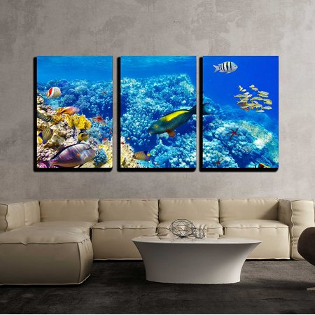 "wall26 - 3 Piece Canvas Wall Art - Wonderful and Beautiful Underwater World with Corals and Tropical Fish. - Modern Home Decor Stretched and Framed Ready to Hang - 24""x36""x3 Panels"