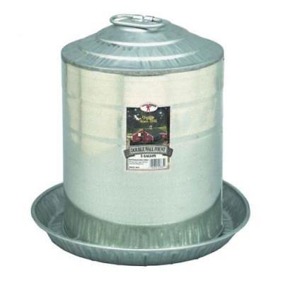 Little Giant Fountains (Little Giant 5 Gallon Double Wall Metal Poultry Fountain)