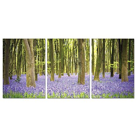 Sls Vision  Forest Meadows  41 X 20 Inches  Ready To Hang  Contemporary Art  Modern Wall Decor  3 Panel Commercial Grade Machine Framed Giclee Canvas Print  Home Decoration Painting  B1111