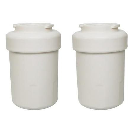 Crucial GE Refrigerator/Icemaker Water Purifier Filter (Set of 2) -  Crucial Vacuum, 0070198079024