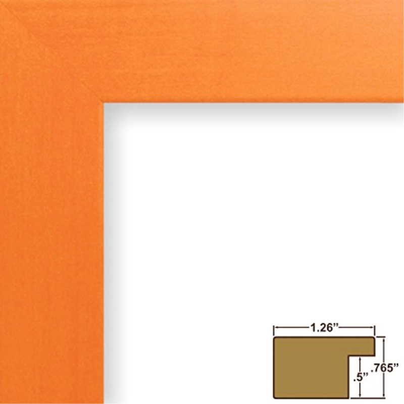 Craig Frames 26028 9 By 12 Inch Picture Frame Smooth Wrap Finish