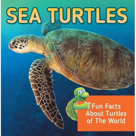 Sea Turtles: Fun Facts About Turtles of The World - (The Oldest Sea Turtle In The World)