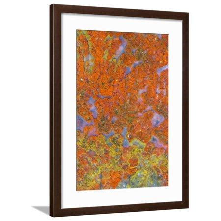 Plume Agate, Sammamish, Washington State Framed Print Wall Art By Darrell Gulin