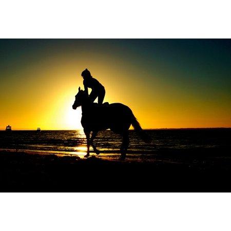 Canvas Print Sport Horse Riding Equestrian Animal Beach Stretched Canvas 10 x 14