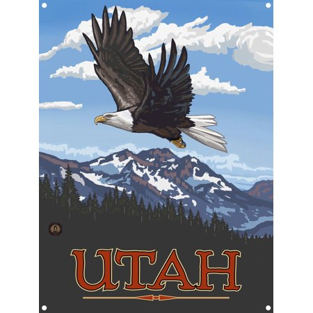 Utah Eagle Soaring Metal Art Print by Paul A. Lanquist (9
