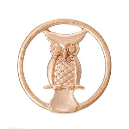 Owl Rose Gold Tone Floating Charms Dish Plate for Glass Locket Pendants and Floating - Origami Owl Halloween Locket