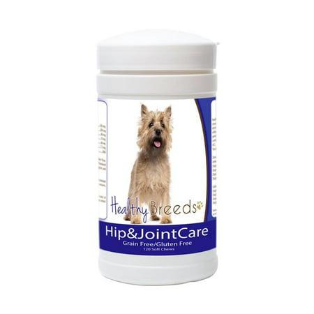 Healthy Breeds 840235153542 Cairn Terrier Soins des hanches et des articulations - image 1 de 1