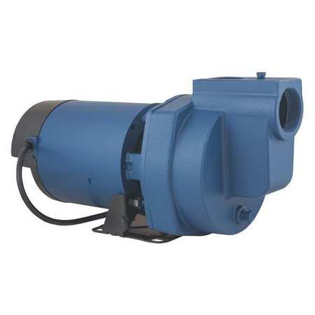 FLINT & WALLING Sprinkler Pump,2 HP,1Ph,120 240VAC SP20P1 by FLINT & WALLING
