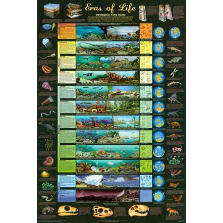 Laminated Eras of Life Geology Educational Science Chart Poster 24 x 36in, decorate your walls with this brand new poster By Poster Revolution