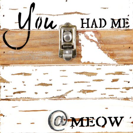 Red Barrel Studio Montagano You Had Me At Meow Picture Frame