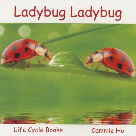 Life Cycle Books (Life Cycle Frog)