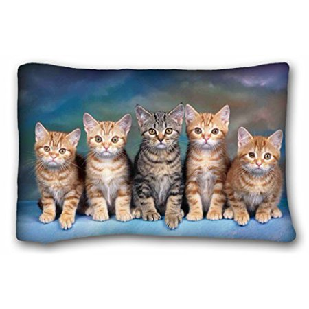 WinHome Custom Kitten Series Cute Cat Pillowcases Zippered Design Printed  Pillow Case Cases Cover Cushion Covers Sofa Size 20x30 Inches Two Side