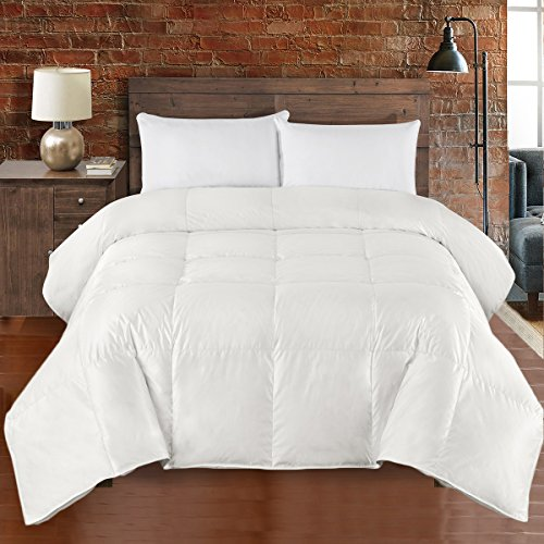 Luxury King / California King - Ivory Oversized 450 Thread Count Silk Goose Down Down Comforter - Extra High Warmth