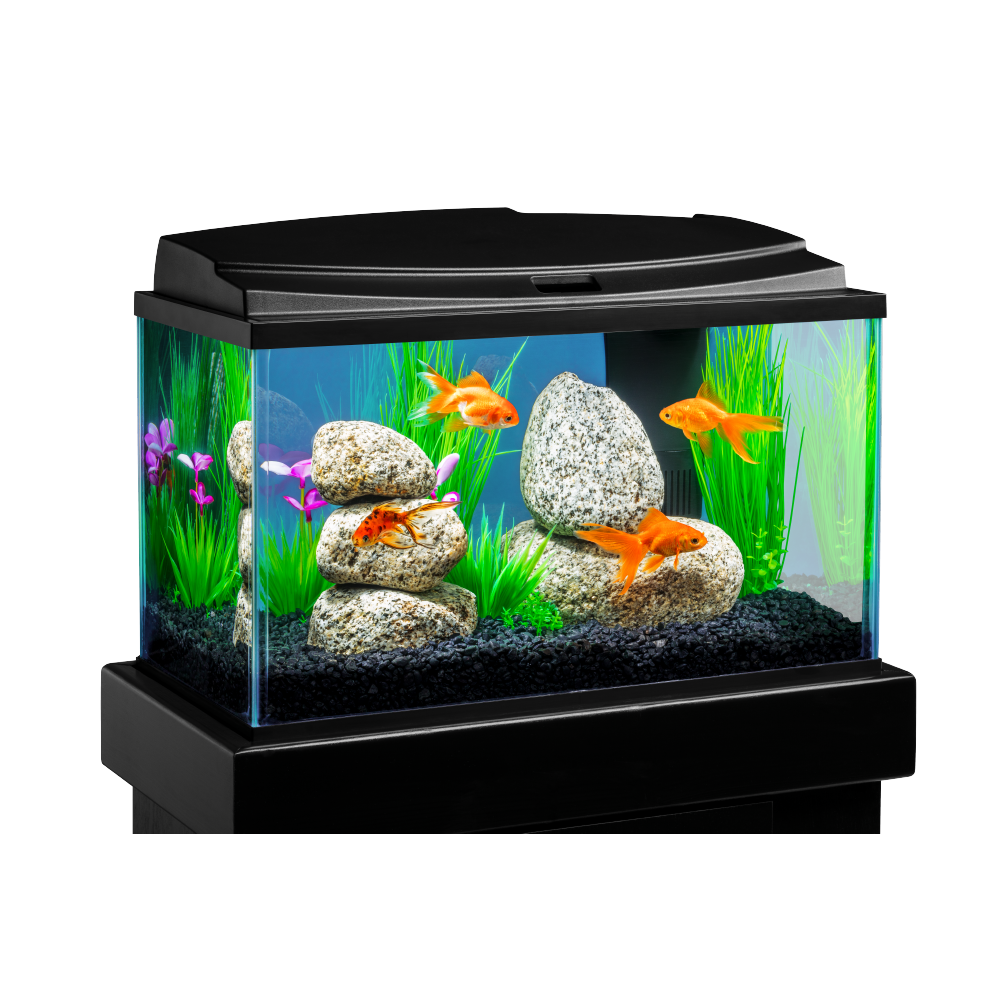 Tetra, Goldfish LED Aquarium Kit, 10-Gallon - Walmart.com
