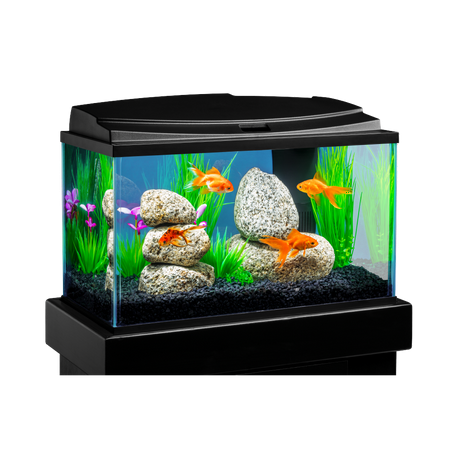 Tetra goldfish led aquarium kit 10 gallon for Fish tank for goldfish