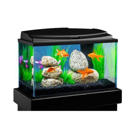 Tetra goldfish led aquarium kit 10 gallon for 10 gallon fish tanks