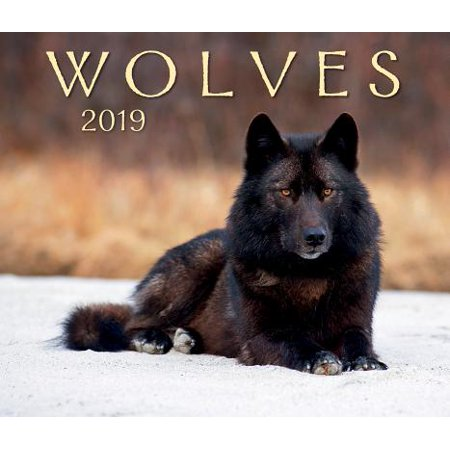 Wolves 2019 (Other) - Firefly Boots