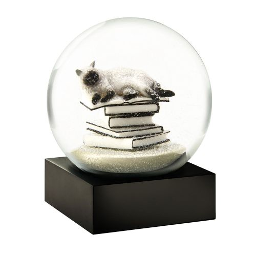 Cat on Books White Snow Globe by Cool Snow Globes