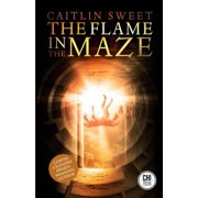 The Flame in the Maze - eBook