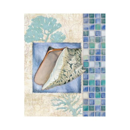 - Mosaic Shell Collage III Print Wall Art By Paul Brent