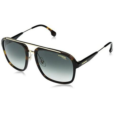 Carrera Men's Ca133s Aviator Sunglasses, Havana Gold/Gray Green, 57 (Havana Aviator Sunglasses)