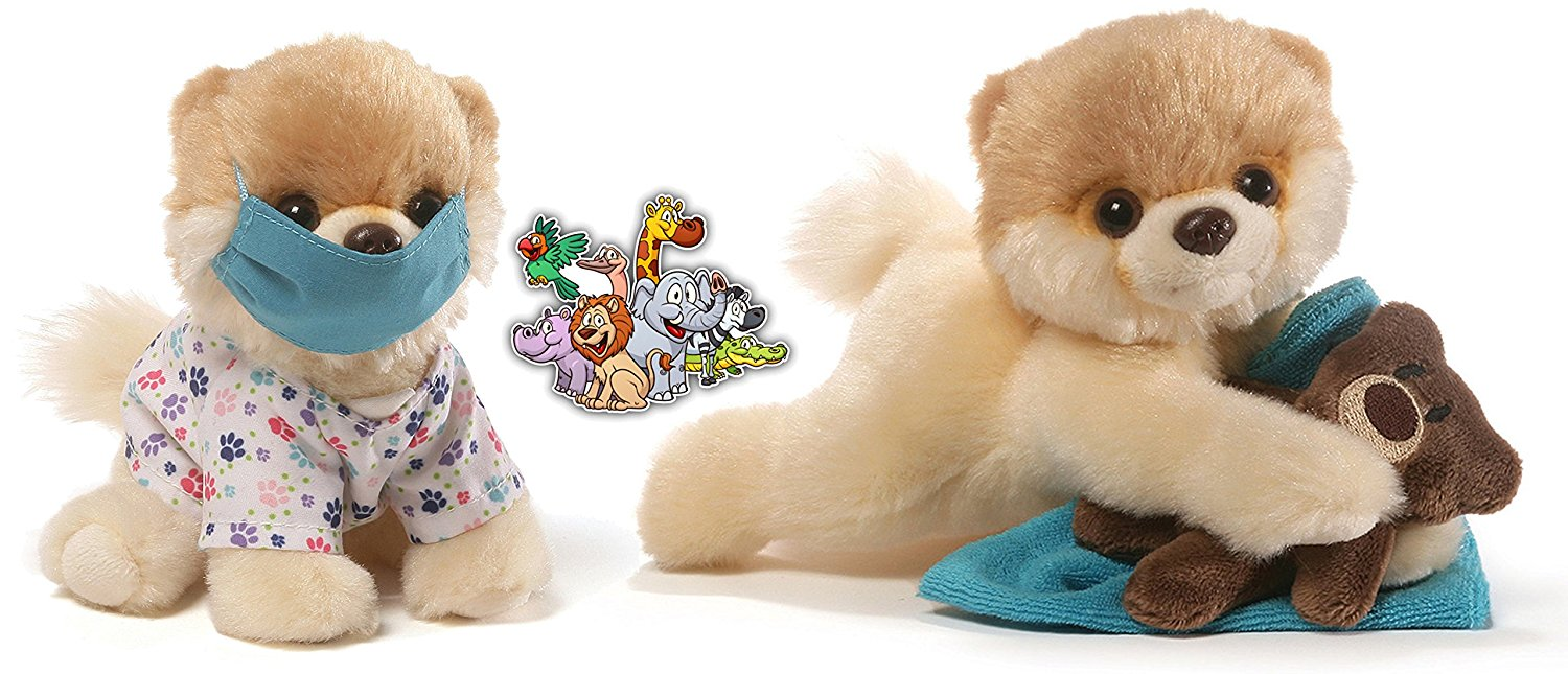 "Gund Itty Bitty Boo Dogs Bedtime Teddy Bear and Scrubs Nurce Special Get Well Soon Set of 2 Plush 5"" with... by Boo World Cutest Dog"