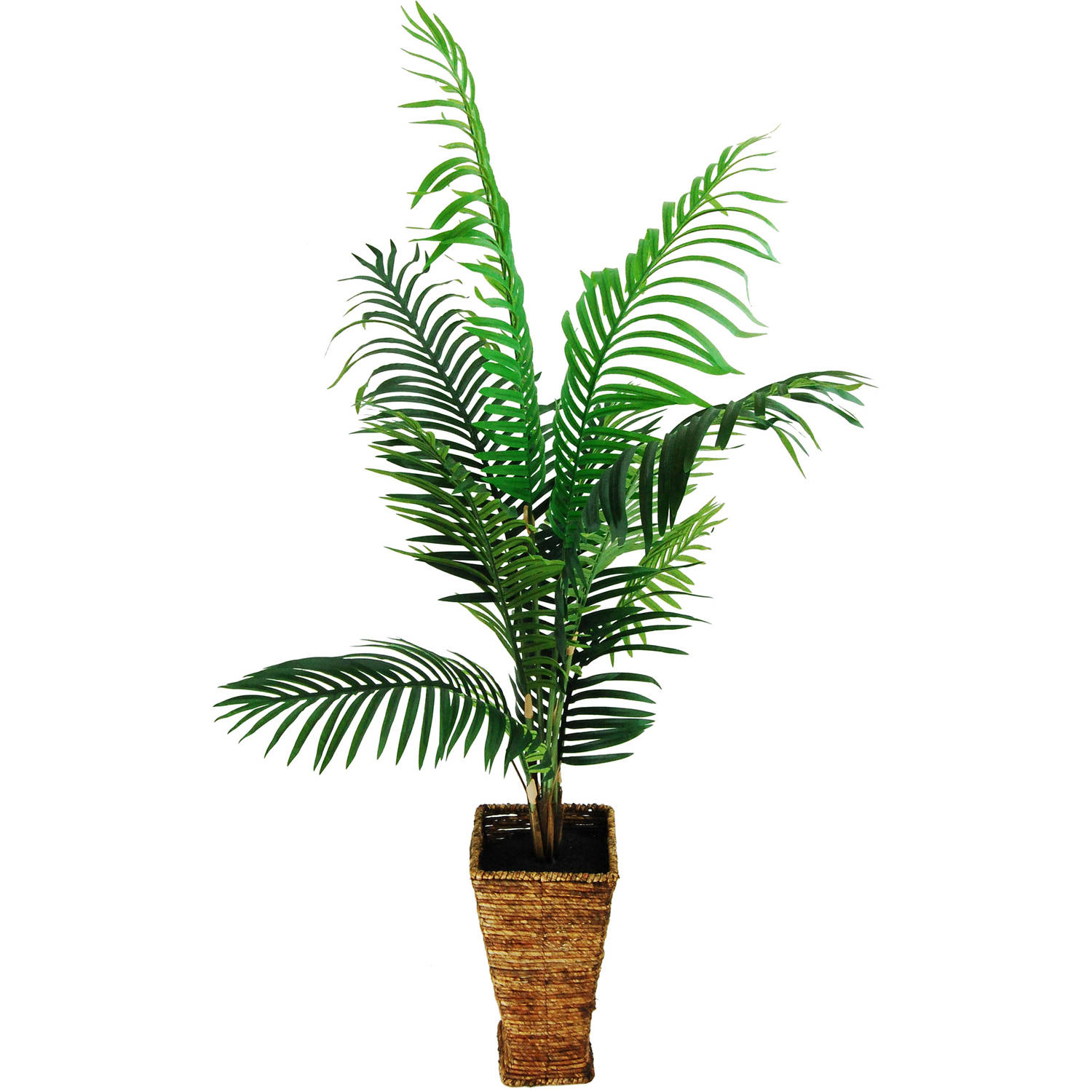 Areca Palm in a Tapered basket with Faux Dirt
