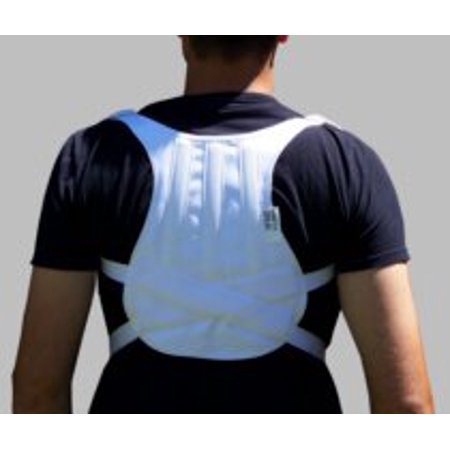 Small Back Support (Full Back Posture Aid Support  (Small))
