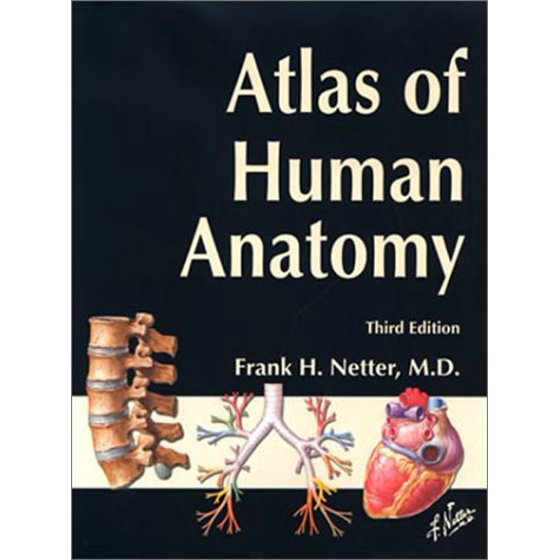 Atlas Of Human Anatomy By Frank H Netter Walmart