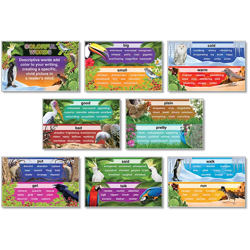 NST3057 - Colorful Words Bulletin Board Set 8 Pcs 11 X 17 by North Star Teacher Resource