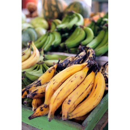 Posterazzi PDDCA03KWI0002 Fresh Bananas at the Local Market in St Johns Antigua Poster Print by Kymri Wilt - 19 x 29 in. - image 1 de 1