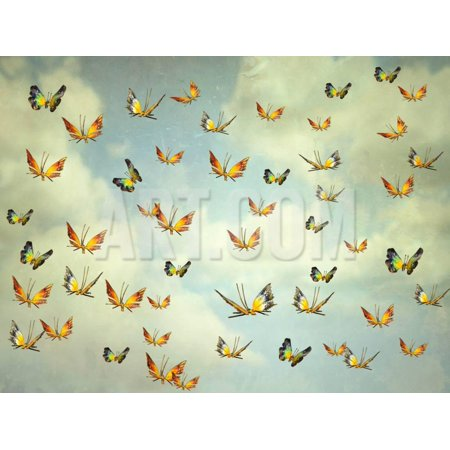 Many Colorful Butterflies Flying into the Sky, Illustrative Photo and Artistic Print Wall Art By Valentina Photos