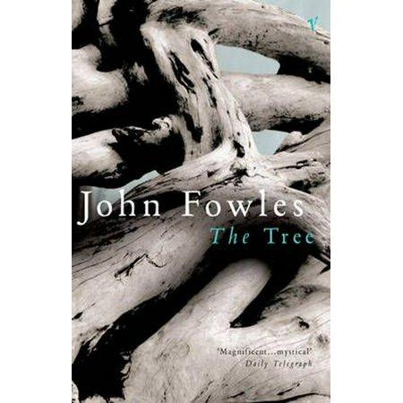 The Tree (Paperback) (Tree Book)