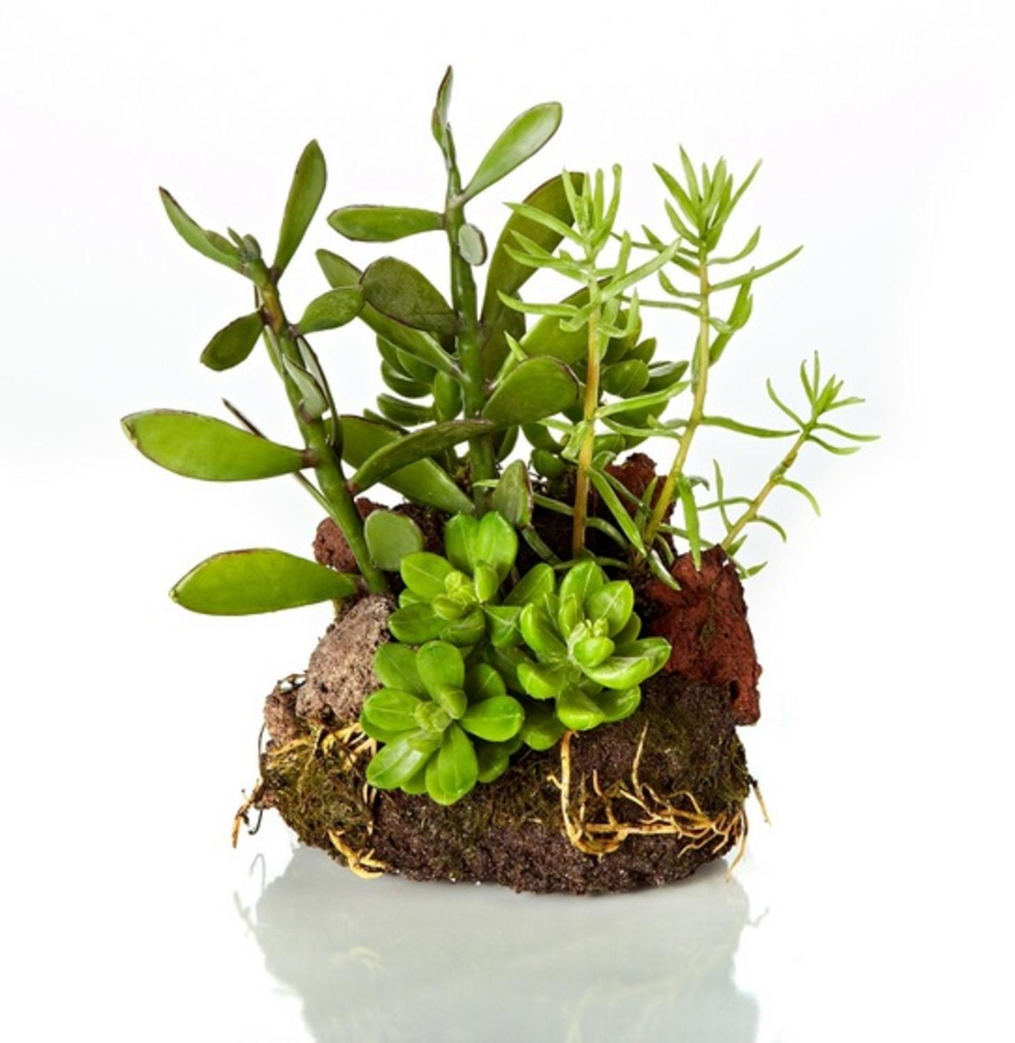 "7.5"" Artificial Southwestern Mixed Green Succulent Plant Garden with Rocks"