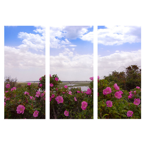 Graffitee Studios Floral & Nature Cape Cod Salt Marsh Triptych Photographic Print on Wrapped Canvas