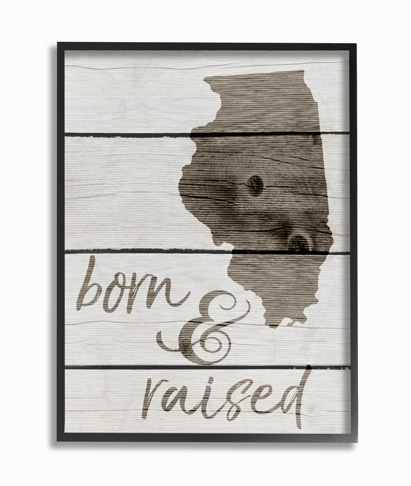 The Stupell Home Decor Collection Born And Raised Illinois Oversized Framed Giclee... by Stupell Industries