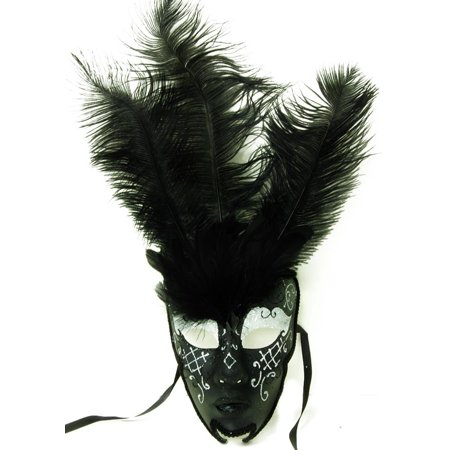 Royal Onyx Feathered Mardi Gras Costume Mask w/Silver Eyebrows One Size ()