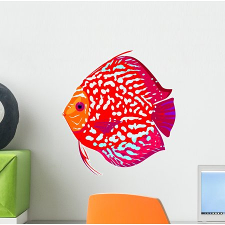 Leopard Wall Mural (Red Leopard Discus Fish Wall Mural by Wallmonkeys Peel and Stick Graphic (12 in H x 11 in W) WM3528)