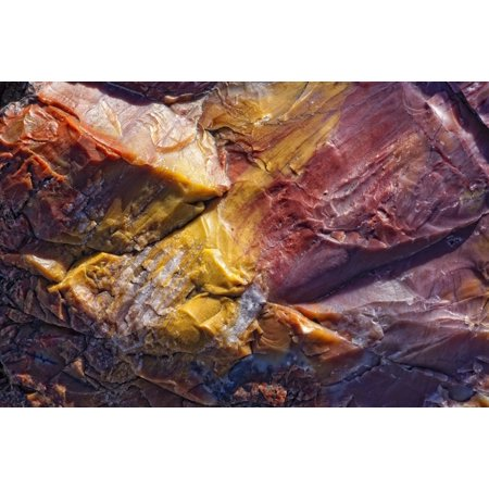 Close Up Of Petrified Wood Petrified Forest National Park Utah Canvas Art - Robert Postma Design Pics (34 x 22)