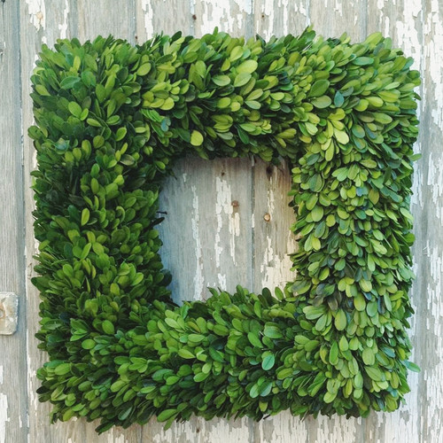 Mills Floral Boxwood Country Manor Square Wreath