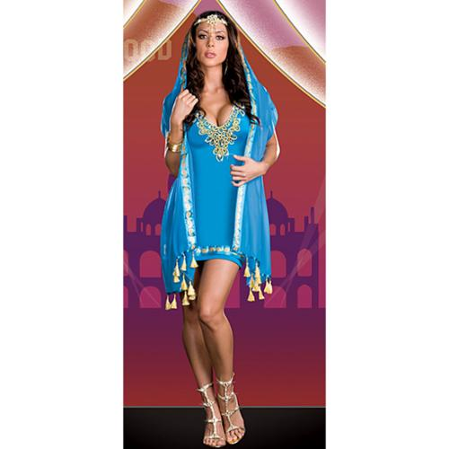 Dreamgirl Womens Taj My Hall Halloween Party Bellydancer Costume