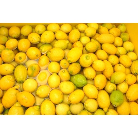 LAMINATED POSTER Fruit Sorrento Lemons Italy Limoncello Passion Poster Print 24 x