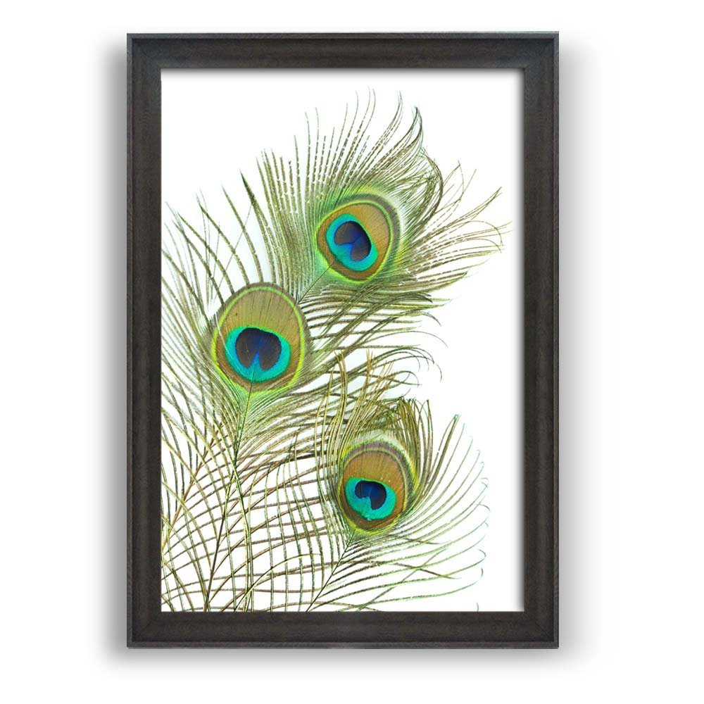 """wall26 - Framed Wall Art Prints - The Feather of a Peacock - Modern Home Decoration. Ready to Hang - Dark Coffee Brown Frame - 24""""x36"""""""