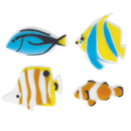 Fish Cake Decorations (Set of 12 Reef Fish 1 1/4inch - 1 1/2inch Edible Sugar Cake & Cupcake Decoration)