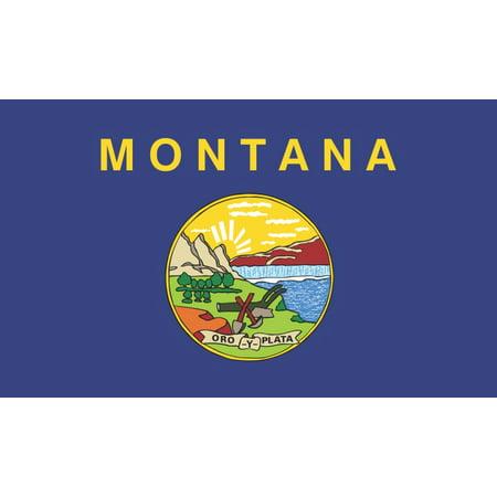 5in x 3in Montana State Flag Sticker Car Truck Vehicle Bumper (Montana State Car)